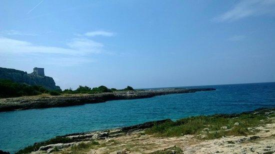Porto Selvaggio : vista dalla roccia