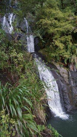 Piha Beach: Fairry Falls, Waitakere National Park
