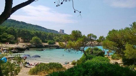 Porto Selvaggio : vista dalla pineta