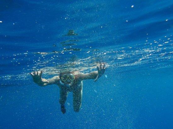 Siva Port Ghalib : красное море
