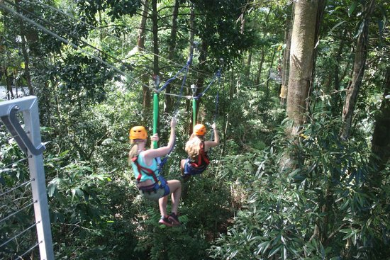 Jungle Surfing Canopy Tours: woohooo !!!