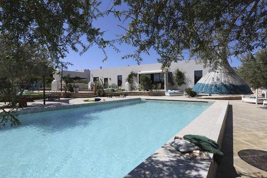 Les Jardins de Villa Maroc : La grande piscine