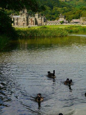 Margam Park: Lake & castle