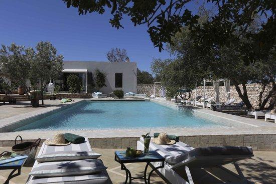 les jardins de villa maroc essaouira morocco