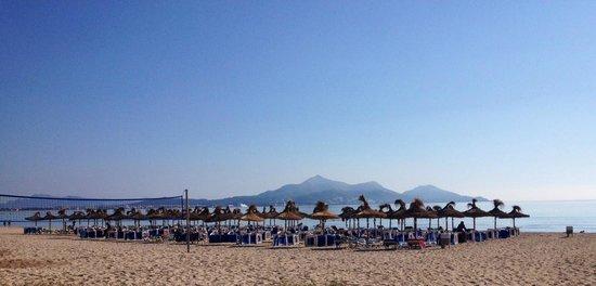 Hotel Playa Esperanza: La plage devant l'hôtel