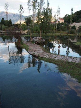 Konoba Catovica Mlini: 週邊環境
