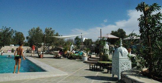 Les Jardins de Villa Maroc : autour la piscine chauffée