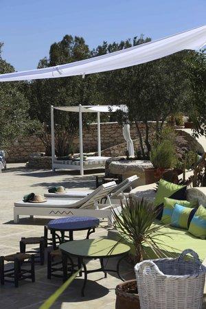 Les Jardins De Villa Maroc : espace autour