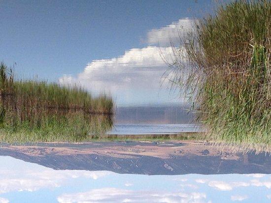 Parque Nacional de las Tablas de Daimiel: Tablas de Daimiel