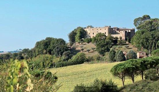 Castello di Ramazzano. Veduta panoramica dai vigneti e dai boschi della tenuta