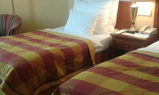 Art Nouveau Palace Hotel : Twin room