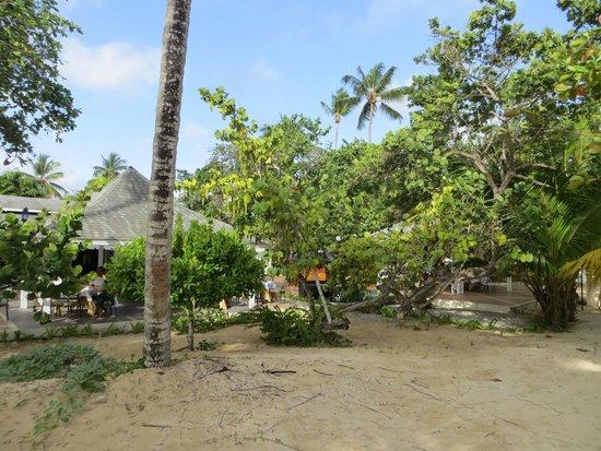 Grand Bahia Principe El Portillo : el bufet al lado de la playa