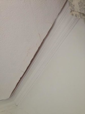 Langdale Chase Hotel: ceiling coming down, poor room maintentance