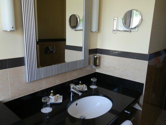 Polonia Palace Hotel : Baño