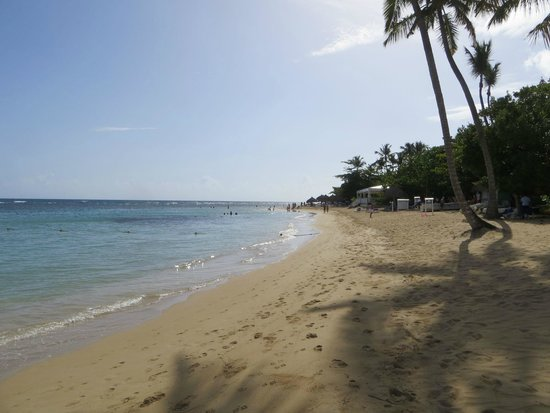 Grand Bahia Principe El Portillo : playa