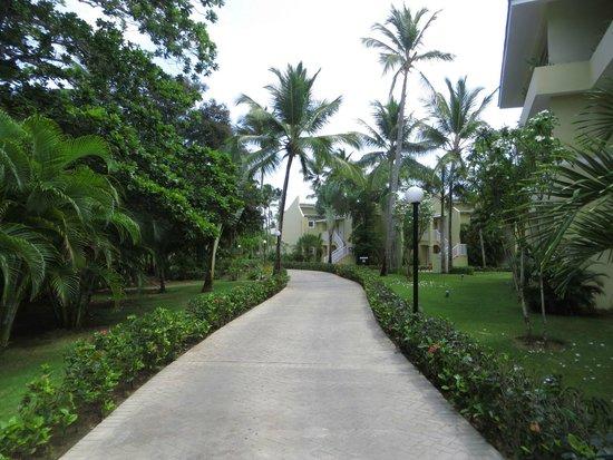 Grand Bahia Principe El Portillo : Las calles del hotel