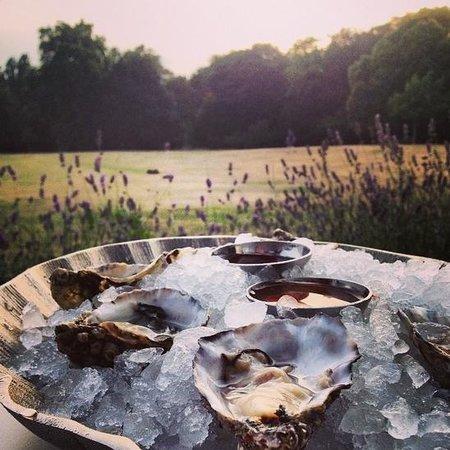 Hotel du Vin Wimbledon: Oysters in the Orangerie