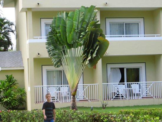 Grand Bahia Principe El Portillo : habitaciones