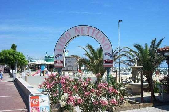 Hotel Nettuno : Chalet