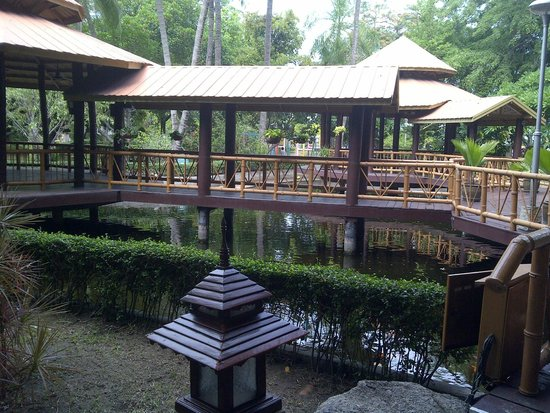 Imperial Pattaya Hotel: Large garden area near pool
