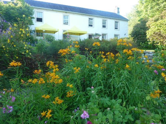 The Hill on the Wall Country Guest House: Hill on the Wall gardens