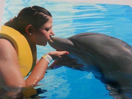 Dolphinaris Riviera Maya Park: Cancun com os golfinhos