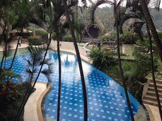 Kupu Kupu Barong Villas and Tree Spa : Overlooking pool