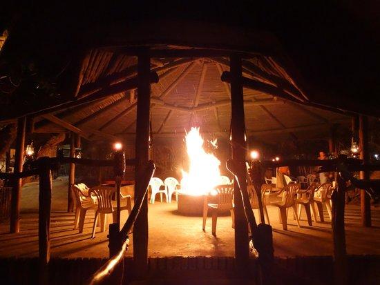 Schotia Safaris Private Game Reserve: Il fuoco del grande Lapa