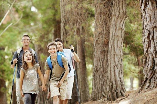 Landgasthof Zum Tierpark: Wandern