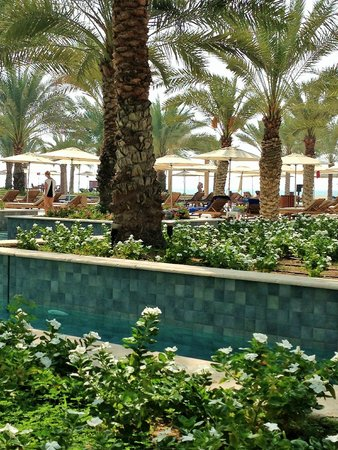 Hilton Ras Al Khaimah Resort & Spa: Poollandschaft des Schwesterhotels