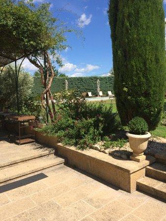 Le Temps des Olives : De tuin