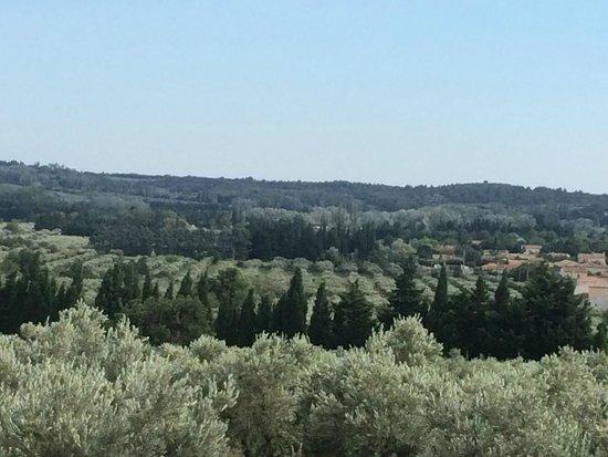 Le Temps des Olives: Uitzicht van op de berg achter de B&B