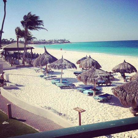 Divi Aruba All Inclusive: View from our room Vista 1