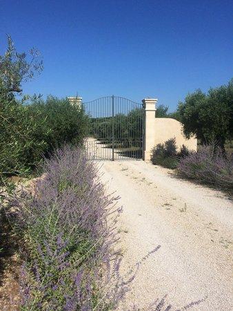 Le Temps des Olives: De parking