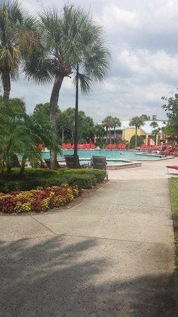 Wyndham Orlando Resort International Drive: Pool Area