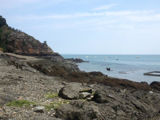 Camping De L'ile Verte : a proximité