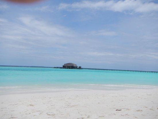 The Sun Siyam Iru Fushi Maldives : wowww