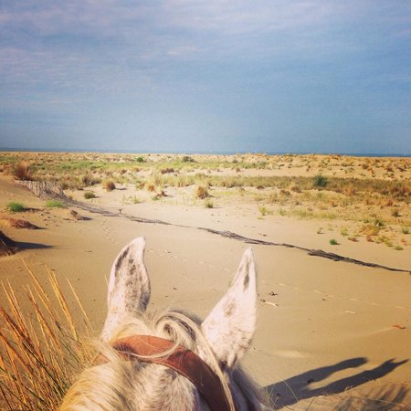 Abrivado Ranch: Les grands espaces !