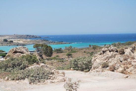 Rethymno Palace: elafonissi