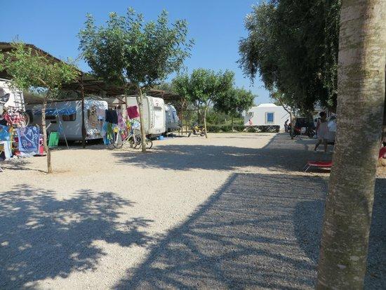Agricamping Le Radici: Area camper