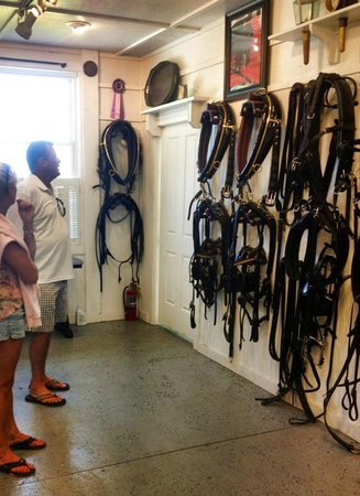 Grand Hotel Stable: Harnesses for all of the Grand horses