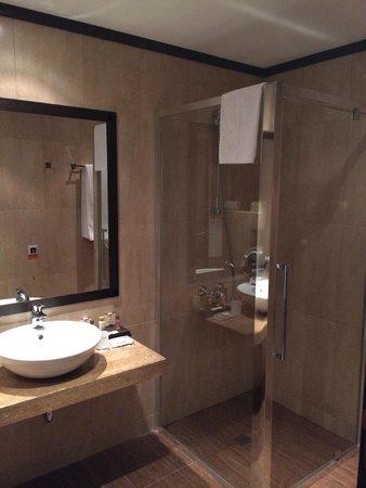BEST WESTERN PLUS Bristol Hotel: BATHROOM
