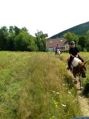 Black Mountain: Horseback riding
