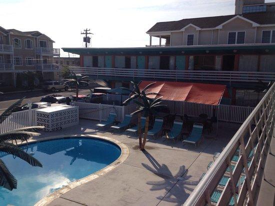 Dolphin Inn: La piscine et espace BBQ
