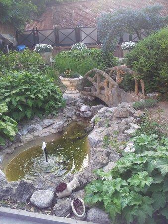 La Mia Cucina: Petit jardinet