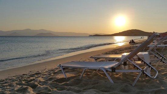 Dimitra Hotel : The beach