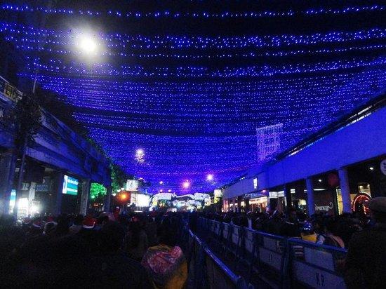 Park Street Kolkata During Christmas.Winter Lightning At Park Street Picture Of Park Street