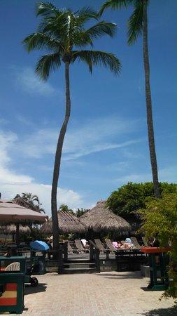 Outrigger Beach Resort : Grounds