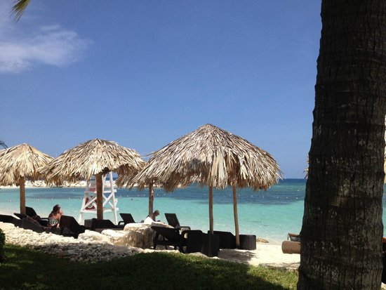 Secrets Wild Orchid Montego Bay: Beach view from hammock