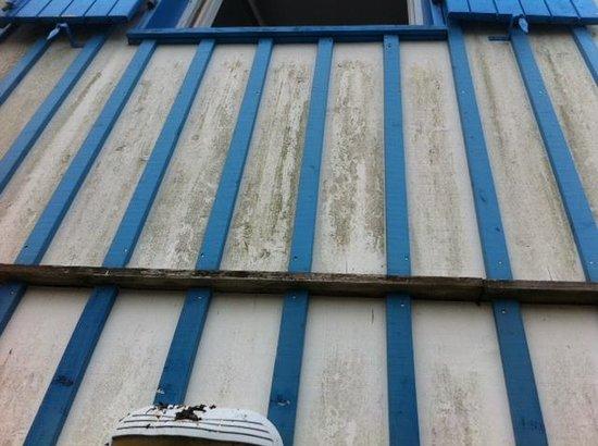 Madame Vacances Résidence Les Rives Marines : Fientes et mousse sur la facade !